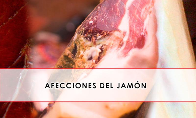 afecciones del jamon