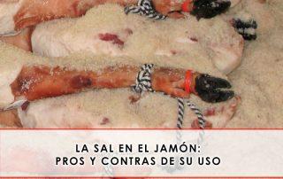 la sal en el jamón: pros y contras de su uso